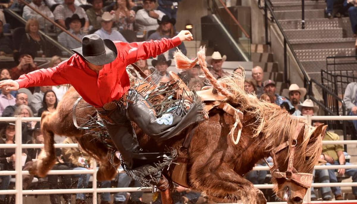 name musical acts for Stock Show & Rodeo 2019