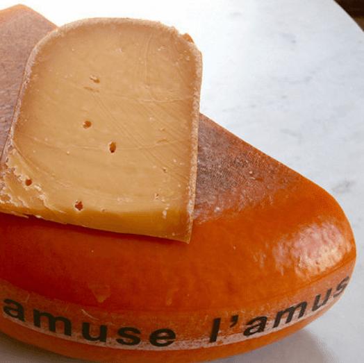 Scardello cheese