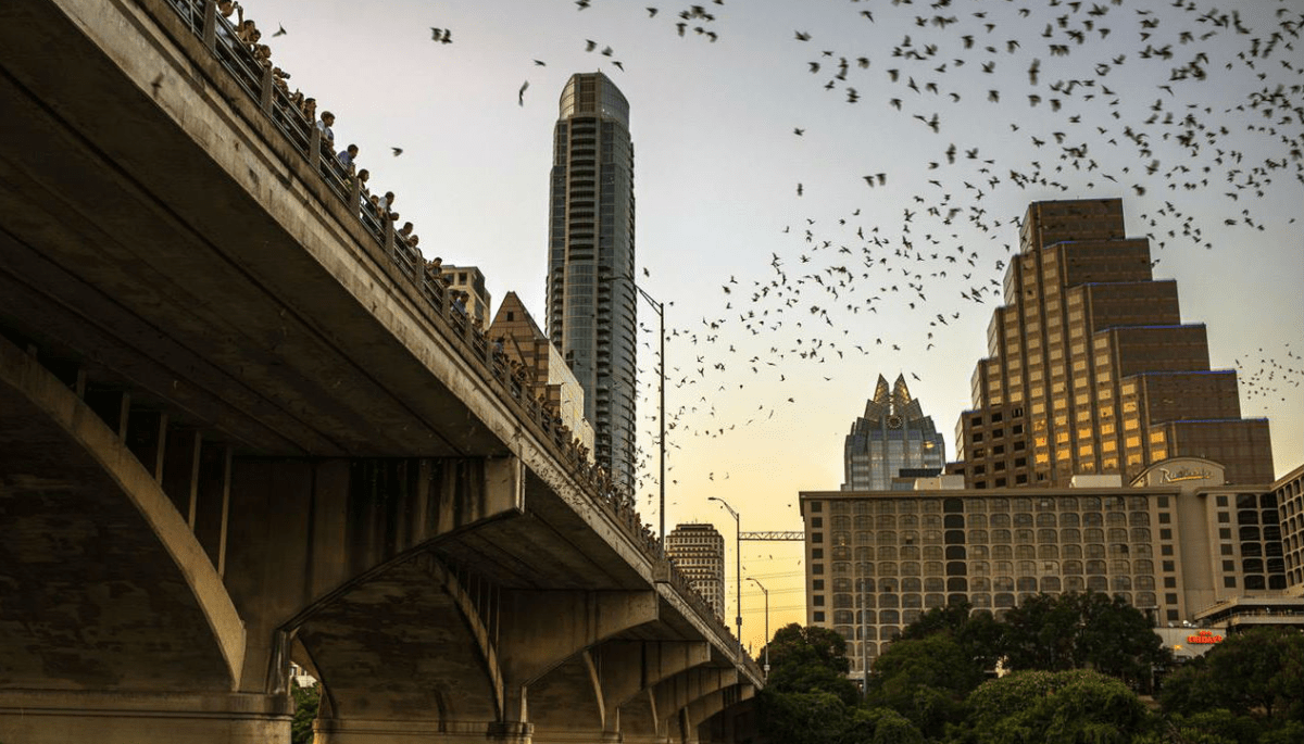 10 quintessential Austin experiences for every newcomer's bucket list