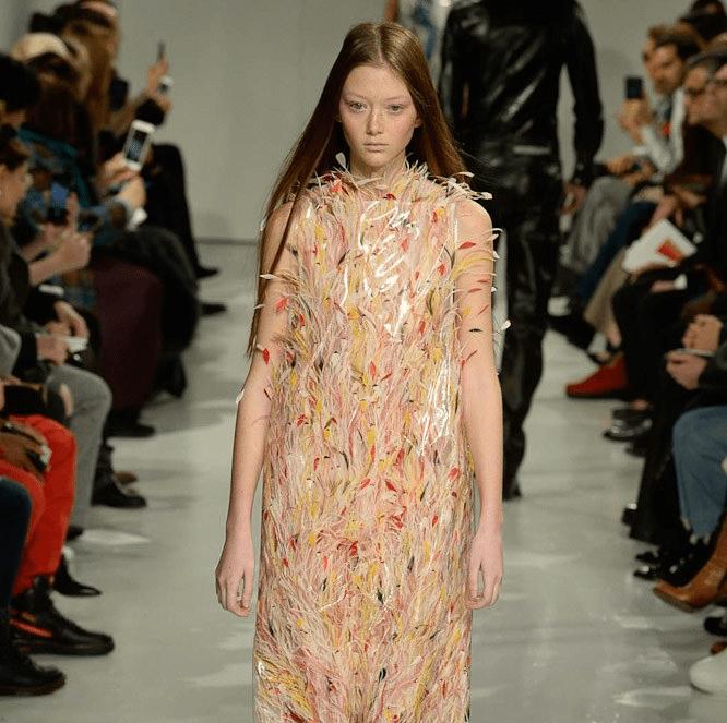 Sara Grace Wallerstedt