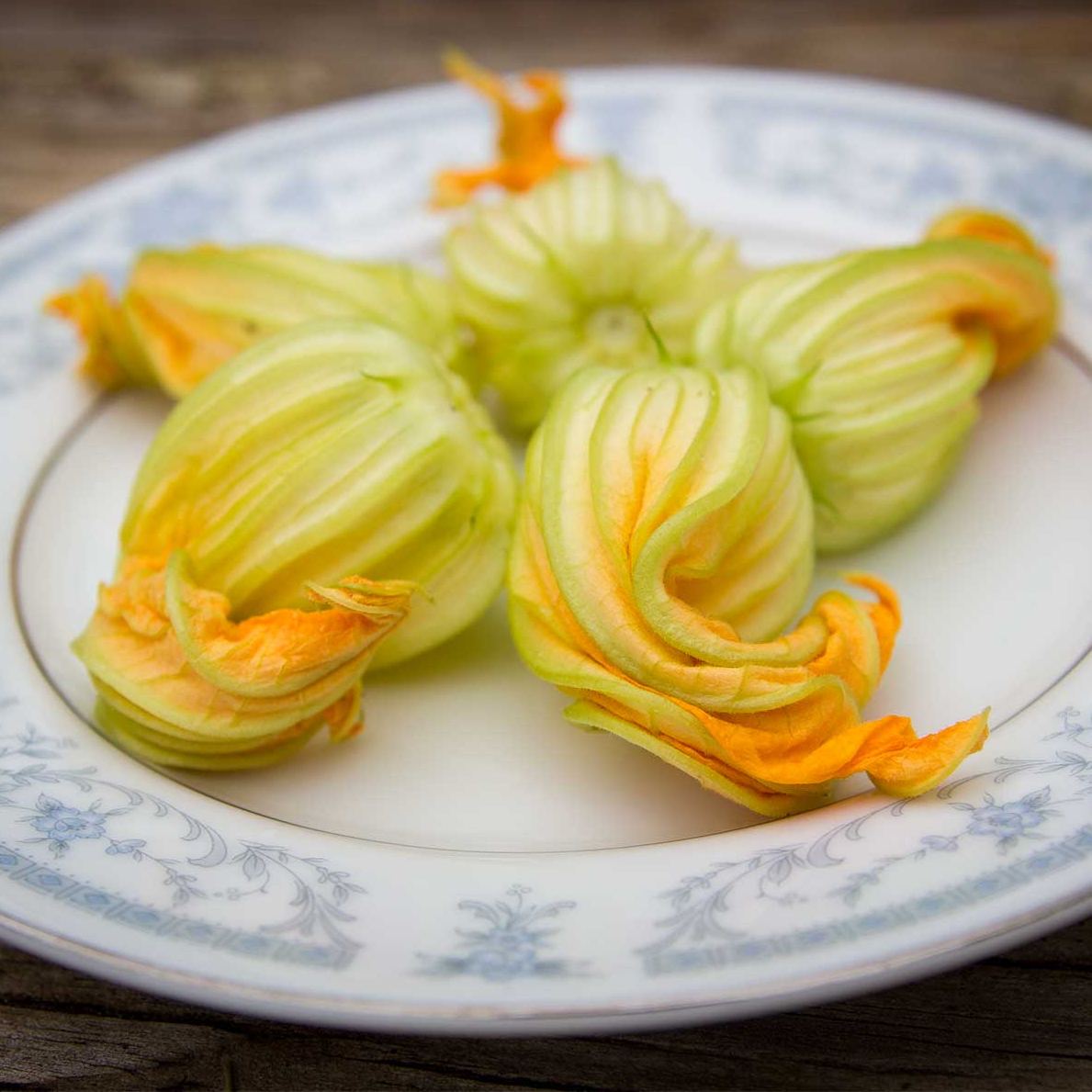 Photo of plate full of sqaush blossoms