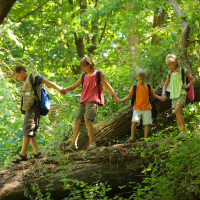 Kids walking over a log in the woods