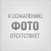 Дмитрий светлаков