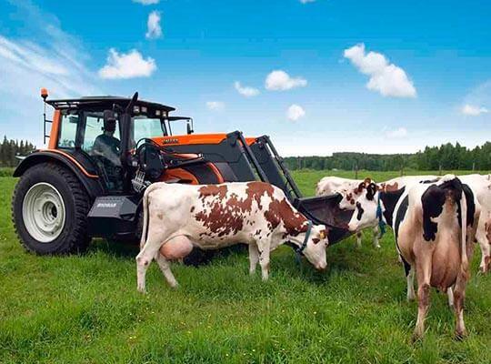 Бизнес-планы для сельского хозяйства
