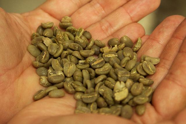 Zelena kafa (Flickr/McKay Savage)