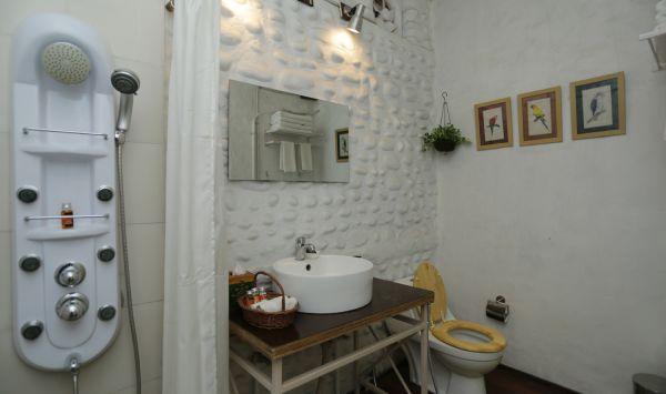 Luxury Cottage Toilet