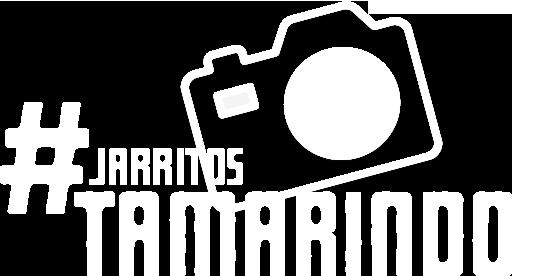 Instagram JarritosTamarindo