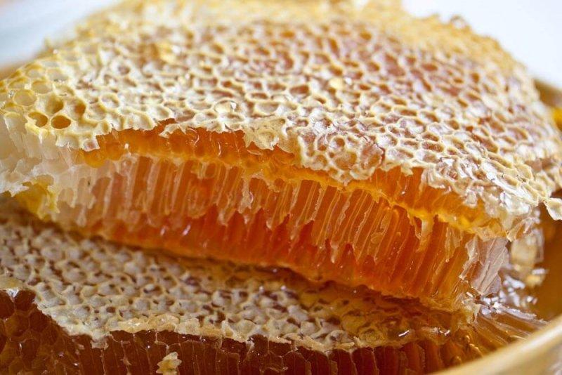 Польза жевать соты мед