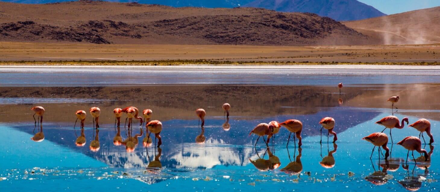 /destinations/south-america/bolivia/Bolivia Overview