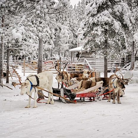 Finnish Lapland, Rovaniemi and winter ecapades
