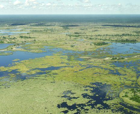 Linyanti Reserve