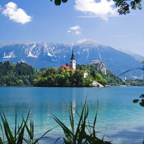 Taste of Slovenia