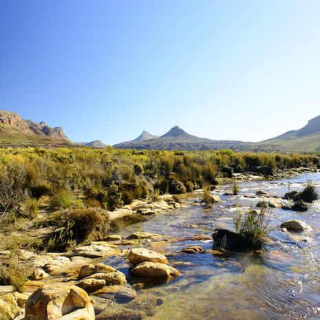 South Africa: West Coast Adventure - Private Travel