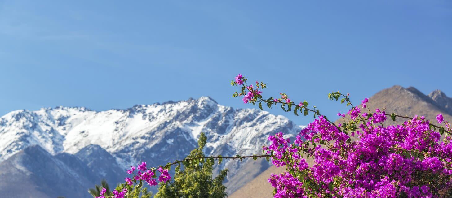 La Serena & Elqui Valley, Chile