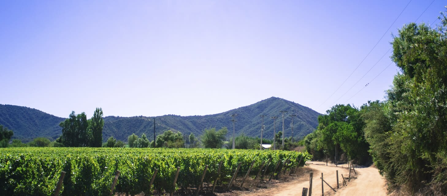 Winelands of Chile, Chile
