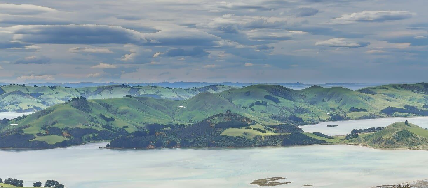 The Otago Peninsula, New Zealand