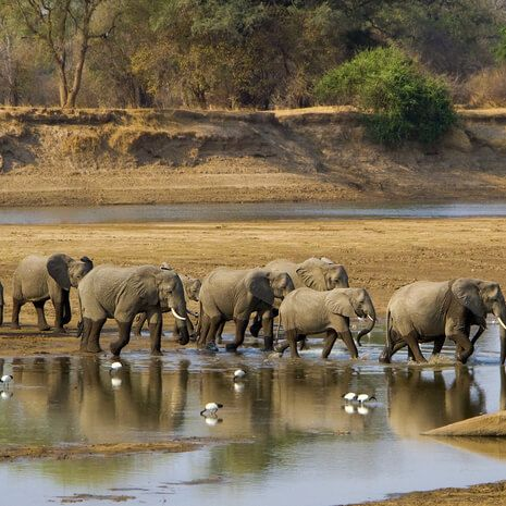 Zambia In Style - Private Travel