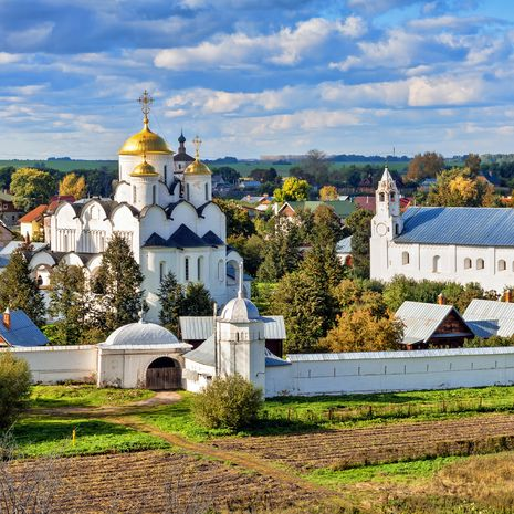 Russia's Golden Ring Non-Exclusive Escorted Group Tour