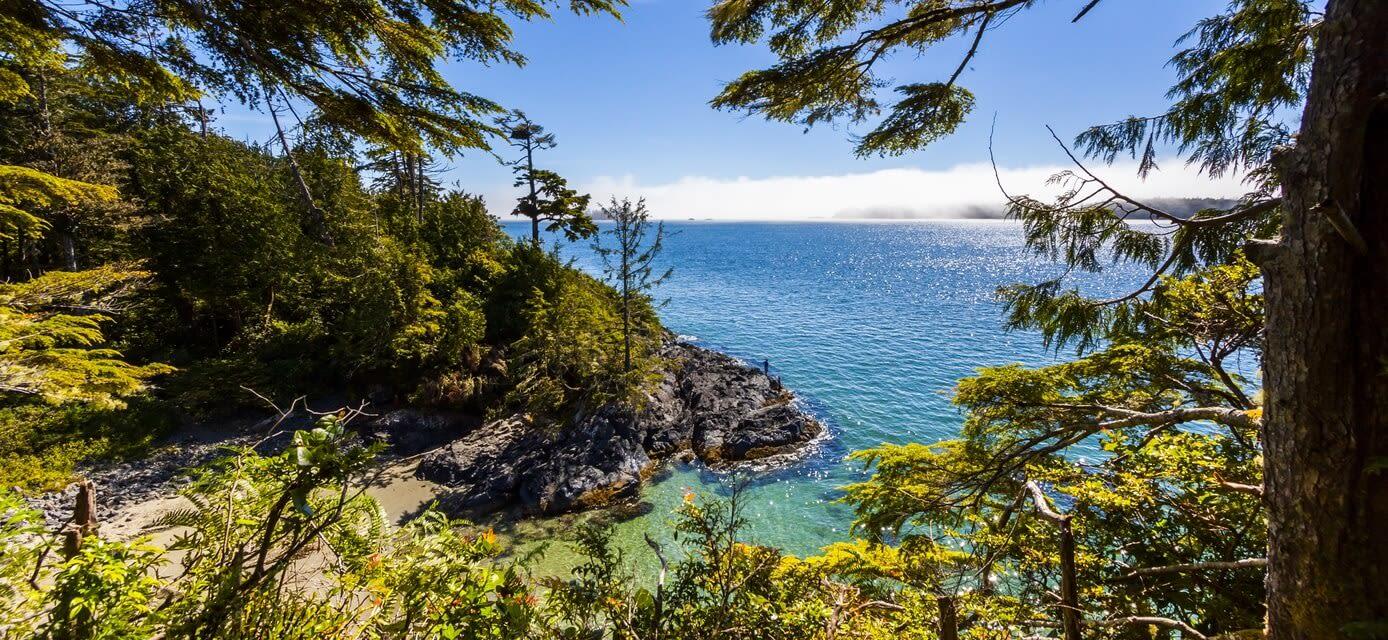 West Coast Wilderness in Style