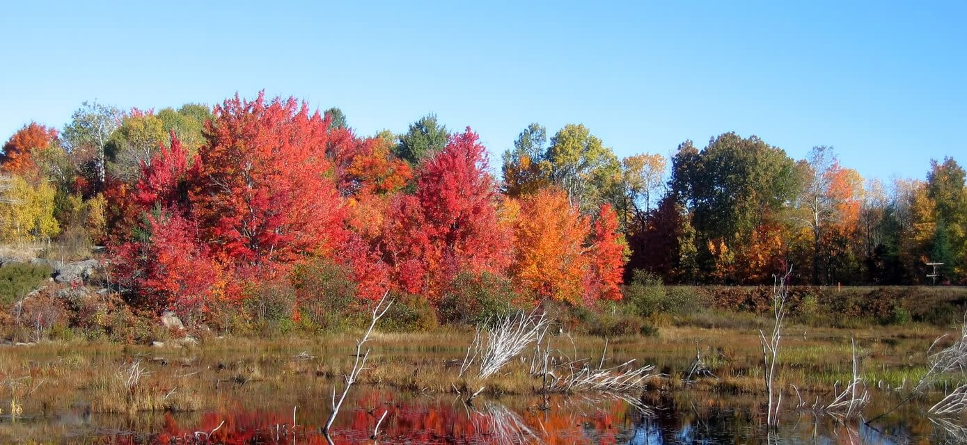 Colours of Eastern Canada