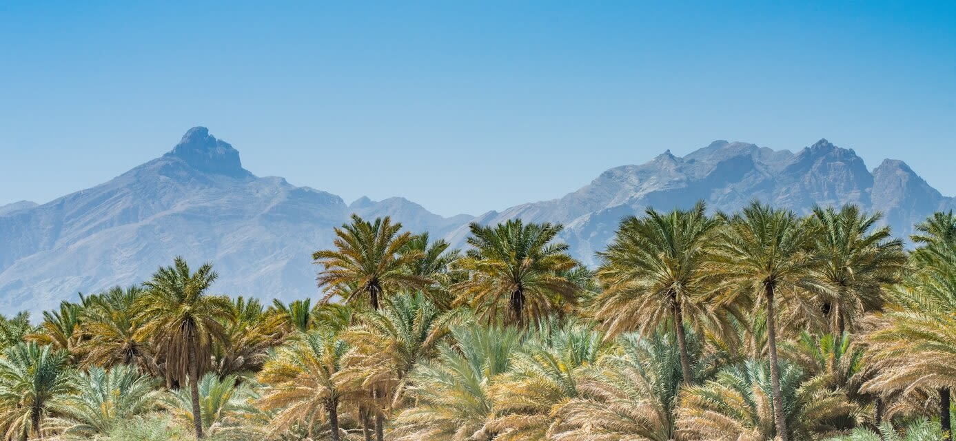 Private general interest tours in Oman