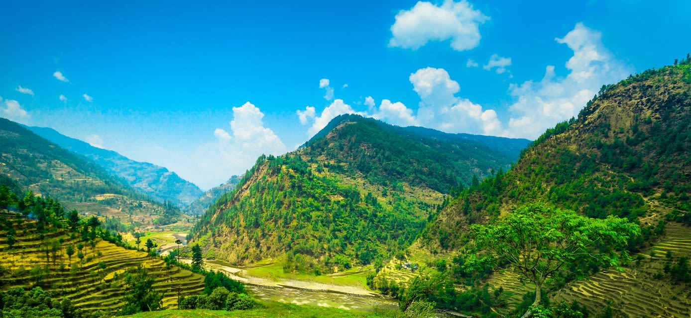 India: A Walk through the Himlayan Foothills