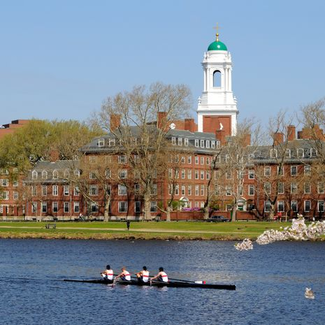 People rowing, running and walking around Harvard University, Boston