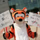 "A Laurie Hollywood supporter is dressed in a ""Tigger"" costume to highlight the plight of a dog at the Stamford Animal Control Center. Hollywood pleaded not guilty to reckless endangerment charges for adopting out aggressive dogs."