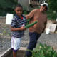 Mardochee Voltaire, 9, holds a zucchini while Fairgate Farm manager Bill Callion looks on.