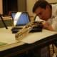 Dr. Daniel Ksepka studies the skull of Pelagornis sandersi, the world's largest-ever flying bird.