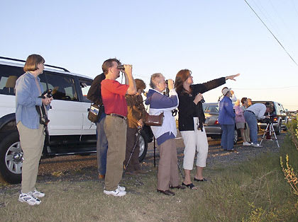 Bird watchers of the Bedford Audubon Society.