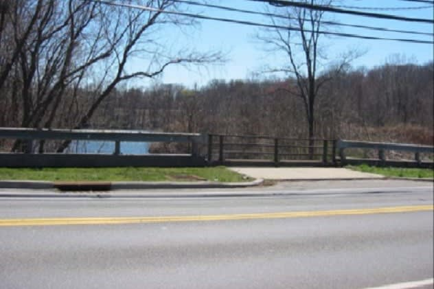This stretch of Bowman Avenue in Rye Brook, which was used as a gravel mine for many years, could become a housing development.