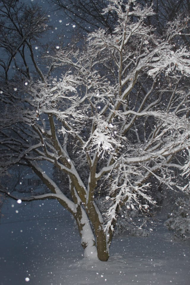 Some light snow is in the forecast for Fairfield County this weekend.