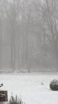 The flakes are small but there are many of them as whiteout conditions hit Fairfield County.