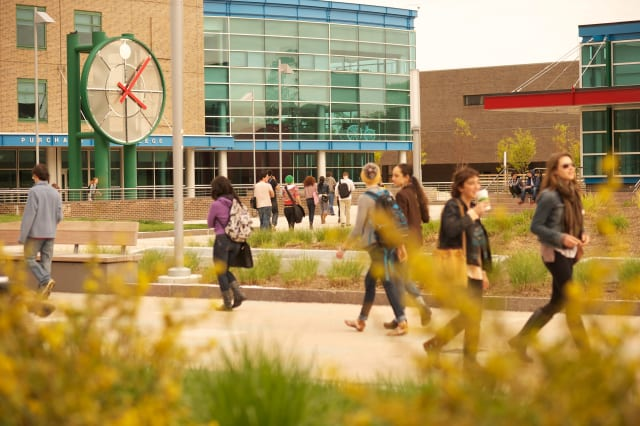 "Purchase College was named a ""Best Value"" school by The Princeton Review."