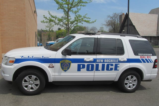 New Rochelle Police rescued a Monroe College student who fell into the water near the marina on Friday, Feb. 7.