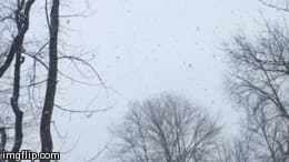 The snow is falling in large, heavy flakes all around Fairfield County.
