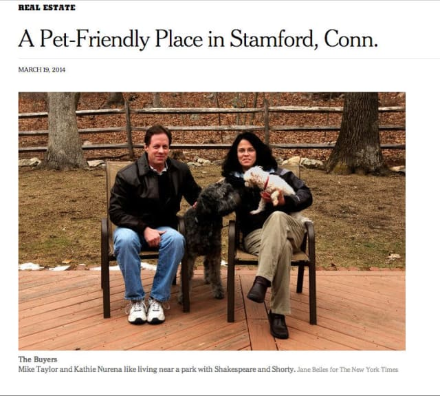 The New York Times is putting the spotlight on a Stamford couple looking for a pet-friendly home.