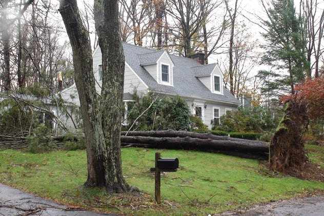 Strong, gusty winds could blow down tree or branches on Wednesday across Westchester County.