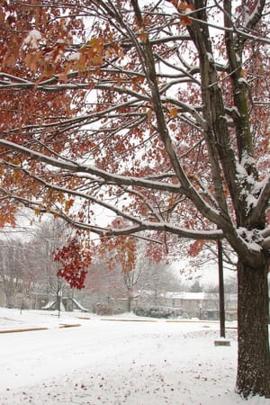 The Harrison School District recently updated its calendar to account for the district using up its planned snow days.