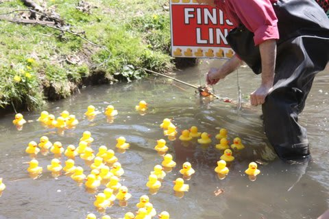 The Tarrytown Rotary Club is set to host the seventh annual Rotary Rubber Duck Derby on April 26.