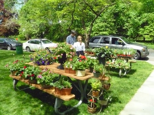 Fairfield's Greenfield Hill Congregational Church will host the 79th annual Dogwood Festival.