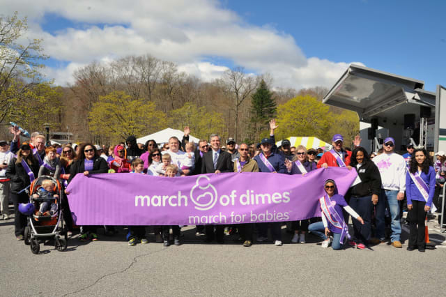 The 2014 March for Babies to benefit the March of Dimes raised more than $800,000 on Sunday, April 27.