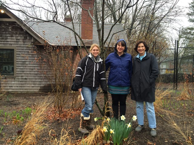 Michelle Eckman, director of education at the Connecticut Audubon Society, with Fairfield residents Jane Carey and Peggy Stuart at the Birdcraft Museum.