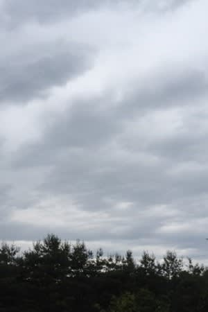 Cloudy skies and showers will dominate the Westchester County forecast for the rest of the week.