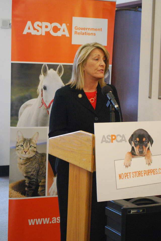 Rep. Brenda Kupchick (R-Fairfield) and Sen. John McKinney (R-Fairfield) are celebrating the passing of a bill that attempts to stop puppy mills.