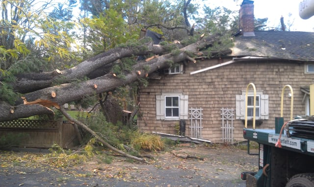 Hurricane Sandy tore through Stamford's Barlett Arboretum, causing heavy damage to its cottage.