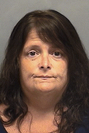 Cynthia Tanner, 52, of Darien was charged with embezzling thousands from an organization that assists veterans, according to police.