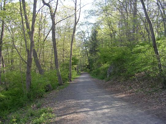 Events to mark National Trails Day and Connecticut Trails Day weekend are planned Saturday in Norwalk and Wilton.