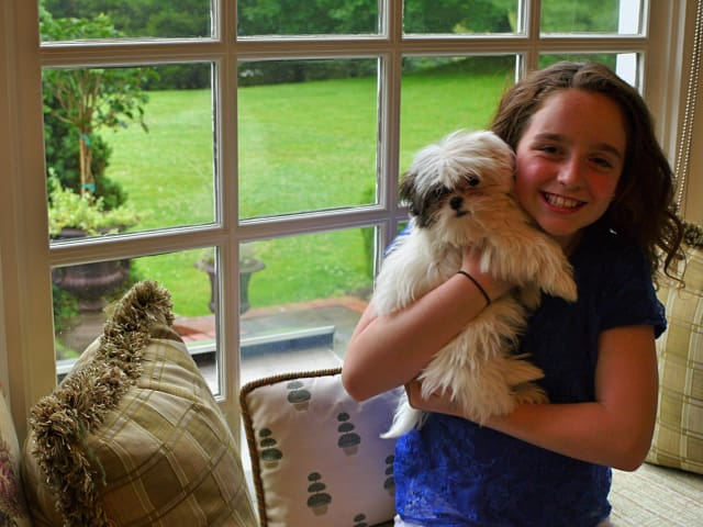 Before going to the Emmy's this weekend, 11-year-old Hayley Negrin of Weston showed off her new puppy named Emmy, after her first-ever nomination and now win.